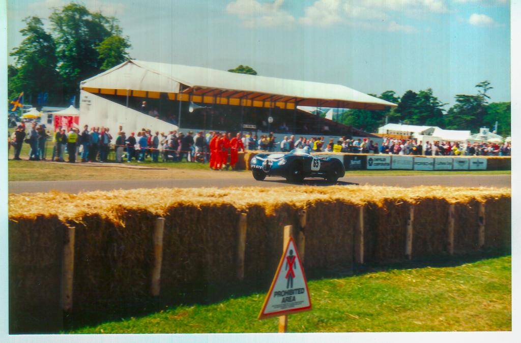 Goodwood Festival of Speed 1996 - 2020-04-08-0041